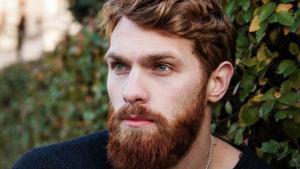 implant barba
